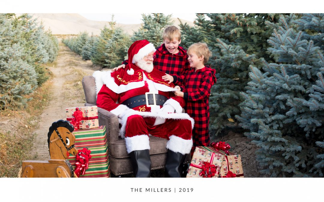 Limited Edition Santa Sessions